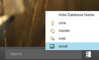 DatabaseSelector